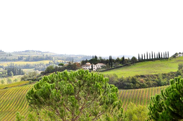 tuscany-0029