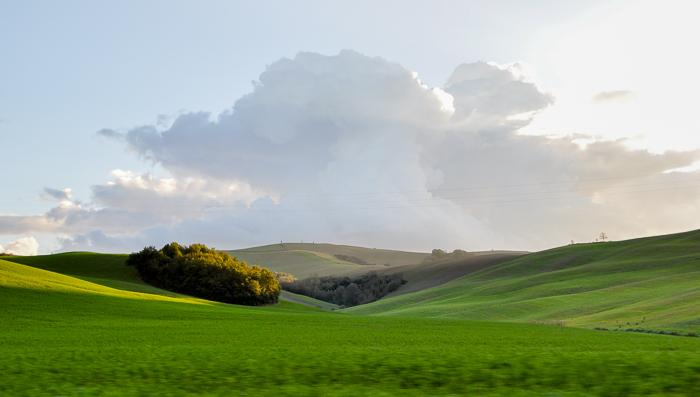 tuscany-0432