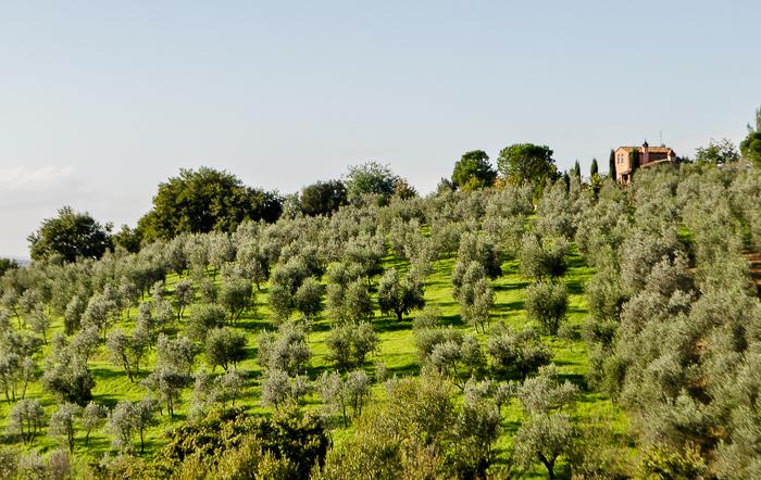 tuscany-0642